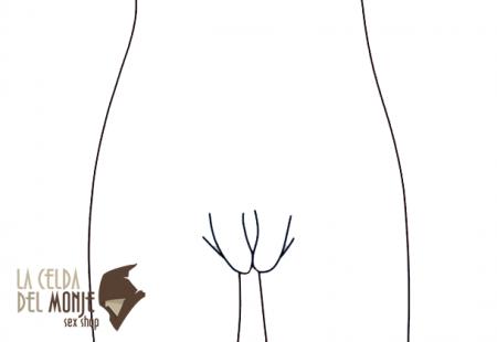Vagina - herradura