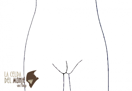 Vagina - Inflada